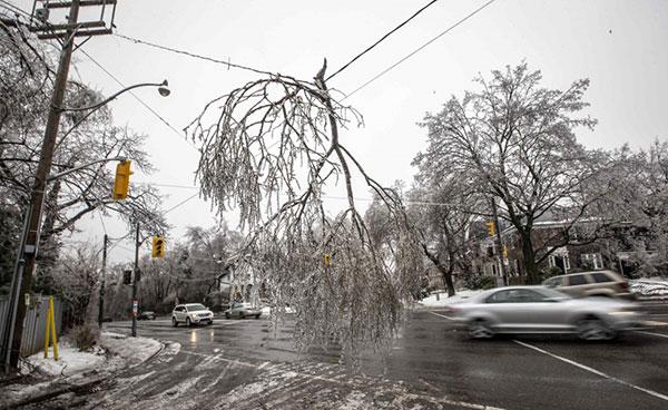 Broken branch on power line in winter weather