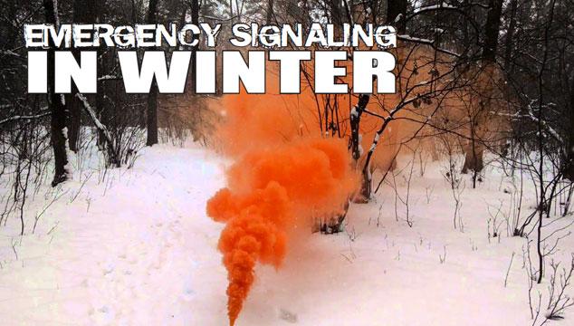 Winter Signaling title image